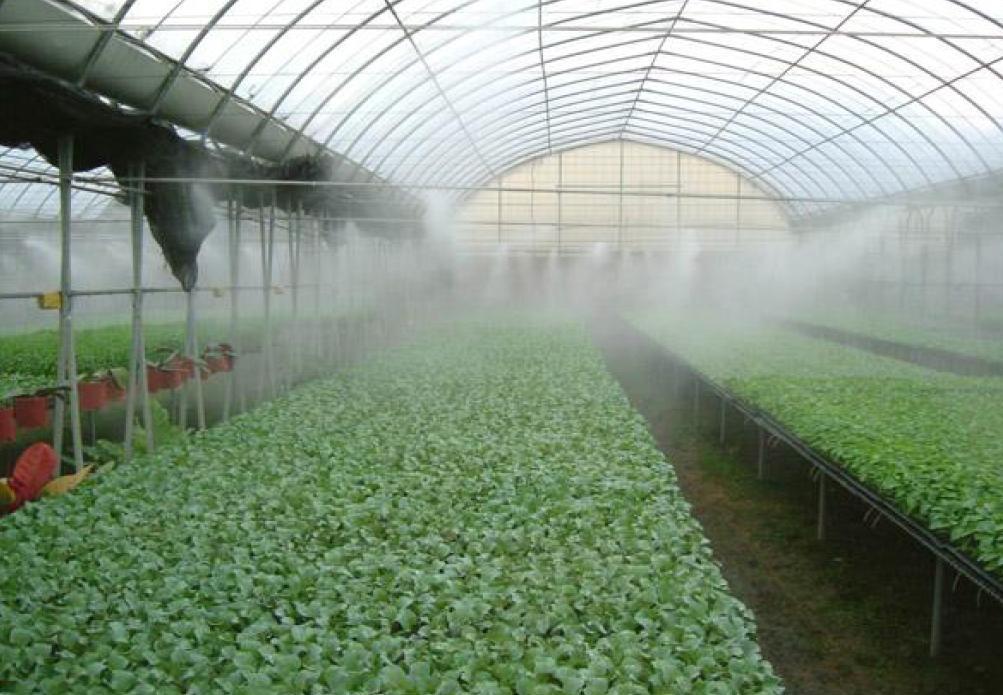 مه پاش گلخانه